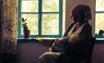 Kazakhstani film Walnut Tree wins at 22nd FICA Film Festival in France