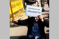 PMK Leader Anbumani Ramadoss Stages 'Dharna' Outside PM's Residence Over Jallikattu Ban