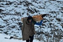 Phots : Cold wave continues in J&K