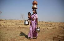116 farmers committed suicide in 2016; 10 states reeling under drought