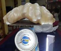 Giant Pearl Worth $100M Kept Under Fisherman's Bed 10 Years
