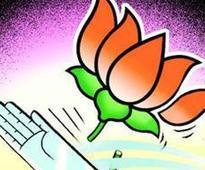 100 MC poll aspirants in Congress