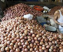Maths explained: Why a farmer got Rs 1 for selling 1,000 kg of onions