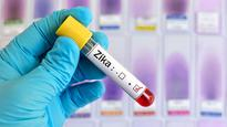 Zika Virus Outbreak Causing Concern Among Olympic Athletes Bound for Brazil