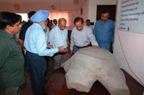 Dr. Harsh Vardhan reviews Research Work in the field of Paleosciences during his visit to theBirbal Sahni Institute of Palaeosciences (BSIP), Lucknow