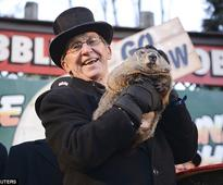 Groundhog Day predicts early end of winter as Punxsutawney Phil casts no shadow