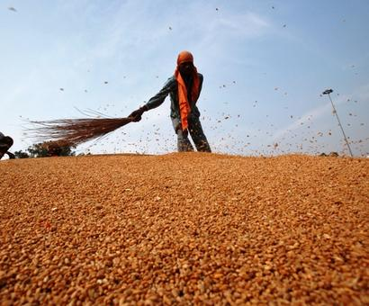 Wholesale inflation at 30-month high in January