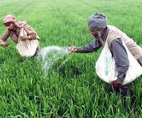 Nod to Rs 10,000-cr bank aid for fertiliser subsidy