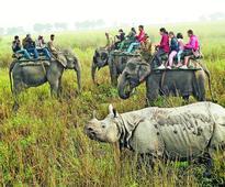 Tourism industry hails CM order