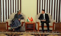 Deputy Minister of Foreign Affairs and Deputy Minister of Commerce and Industry of India discuss cooperation development issues