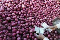Robbers try to sell looted onion in cash crunch-hit market, nabbed