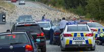 Dunedin police pursuit stopped by flock of sheep