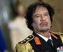 Gaddafi cousin on trial for attempted murder