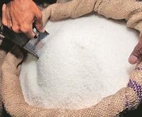 Sugar shares recover from 52-week low; Dwarikesh, Dhampur Sugar up 8%