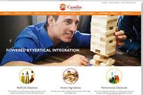 Camlin Fine Sciences Mexican unit acquires 65% stake in Dresen Quimica