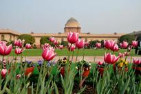 Mughal Gardens to open from Feb 5