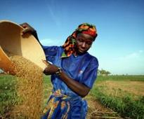 'Women carrying babies can't transform Africa'