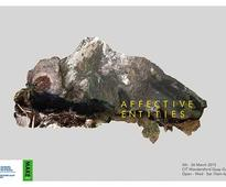 Exhibition > Affective Entities @ CIT Wandesford Gallery 5th - 26th March