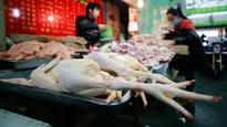 WHO: H7N9 bird flu in China appears under control
