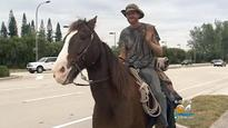 Chris Emerson, Man riding malnourished horse Trigger from South Carolina to Florida keys, charged with animal cruelty