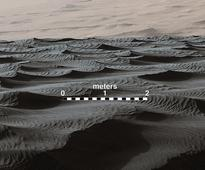 A bewildering form of dune on Mars