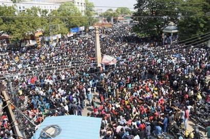 Thousands join pro-Jallikattu protests; HC refuses to intervene