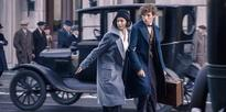 What We Can Expect From Fantastic Beasts And Where To Find Them 2, According To The Director