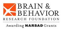 Brain & Behavior Research Foundation Awards NARSAD Distinguished Investigator Grants Valued At $1.5 Million to Scientists Pursuing Innovative Mental Health Research
