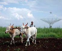 Maharashtra makes Aadhaar mandatory to avail fertiliser subsidy, will preven exploitation of loopholes, says govt