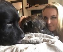 Lindsey Vonn suffers wardrobe malfunction and her dogs are to blame
