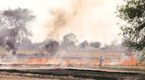 Delhi's air quality takes a turn for worse, reports SAFAR