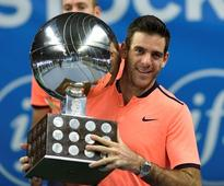 Del Potro shoots up 21 spots in rankings after Stockholm win