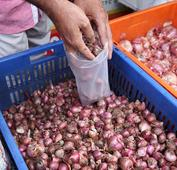 Small onion prices shoot up to Rs 200 per Kg