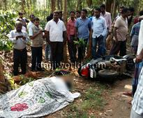 Madikeri: Elephant tramples over, kills girl on scooter