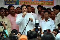 BJP Pins Hopes on Rahul's Cousin