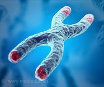 CASK Gene's Role in Microcephaly Identified