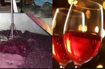 Kerala church producing 1 lakh litres of wine