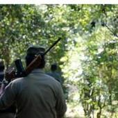 Chhattisgarh: 40 Naxals surrender, get Rs 10,000 as goodwill gesture