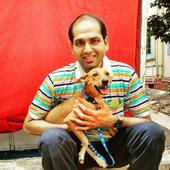 Do You Remember The Dog Thrown Off The Roof In Chennai? Meet Bhadra And This Is Her Story!