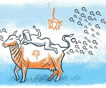 Why do BJP members make strange remarks?