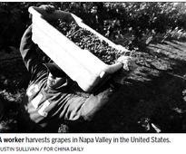 Napa Valley trademark wins legal battle