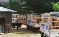 N.Korea Still Uses Trucks Donated in Thaw 18 Years Ago