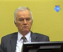 UN prosecutors call for life term for 'Butcher of Bosnia'