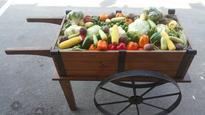 Vegetable self-sufficiency in five years