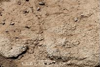 Curiosity Rover To Make Second Drill...