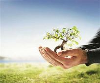 Environmentalists plant trees in memory of Kargil War heroes