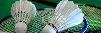 BWF plans to make badminton into beach sport