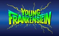 Full Cast Announced for The Muny's YOUNG FRANKENSTEIN, Starring Robert Petkoff, Jen Cody & More