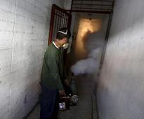 After WHO alert, India readies to take on Zika