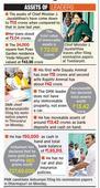Tamil Nadu polls: Jayalalithaa declares assets worth Rs 113 crore